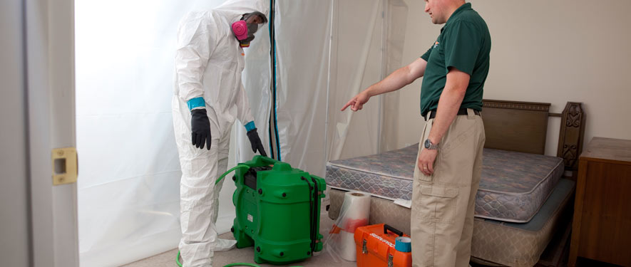 Hayward, WI mold removal process